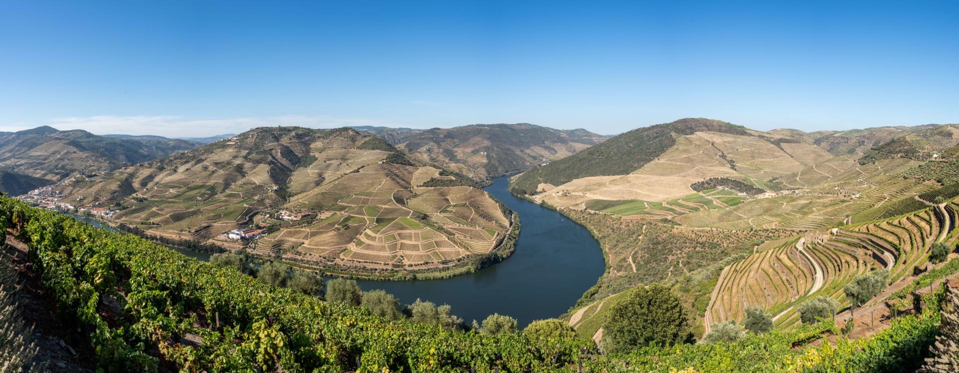 Paysage de la vallée du Douro au Portugal