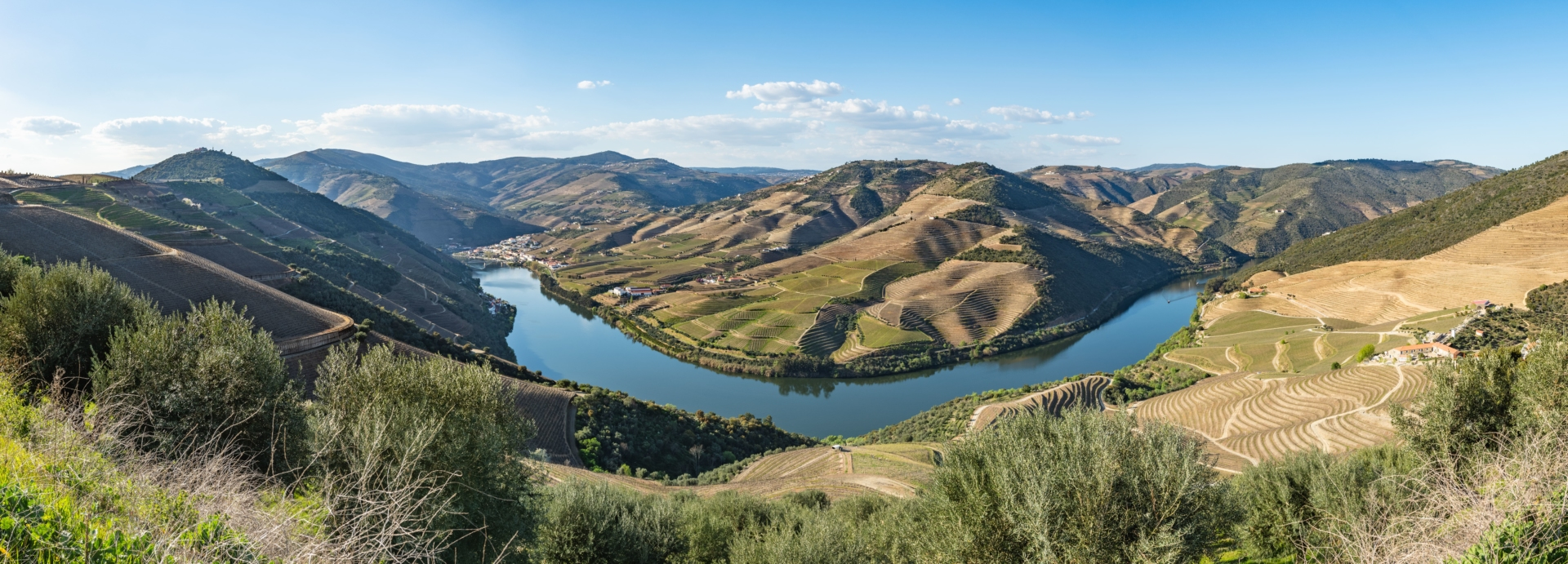 Panorama verdoyant de la vallée du Douro